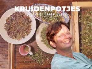 Blog Susanne Hurenkamp Kruidenpotjes