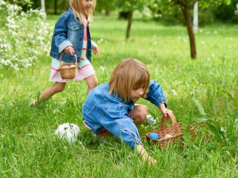 Paasspelletjes : Eieren zoeken