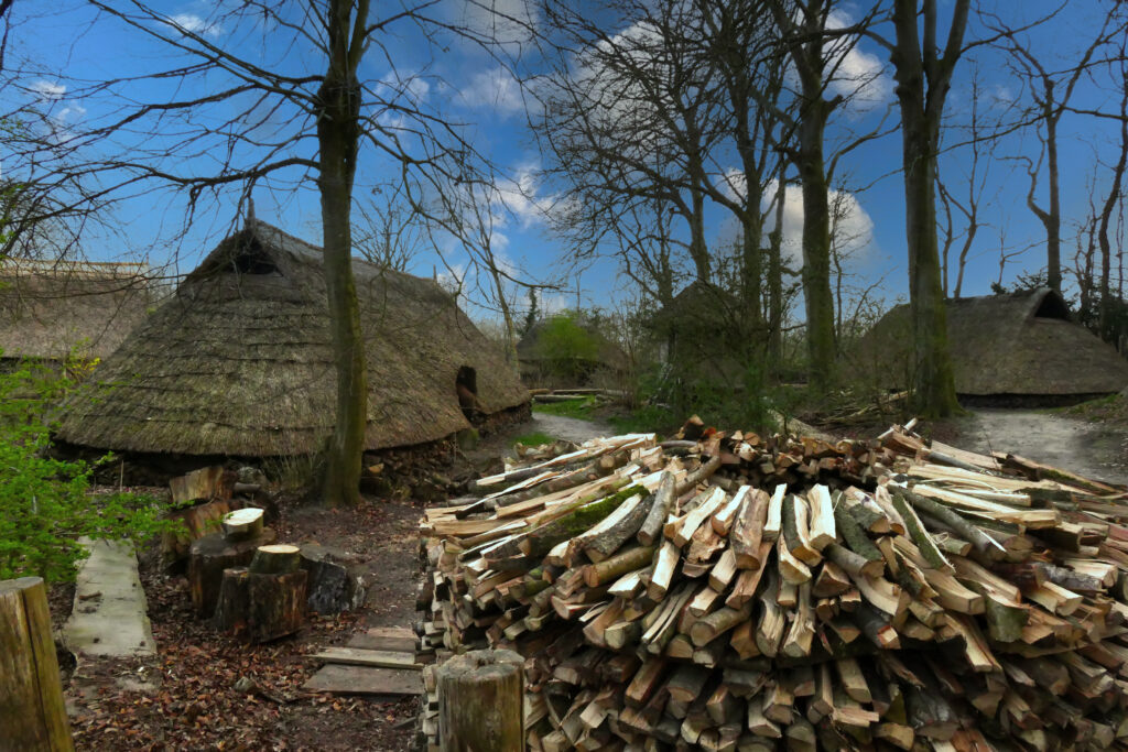 prehistorisch dorp Wilhelminaoord